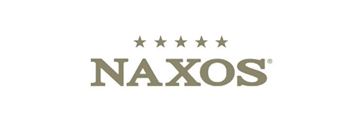 domus loghi aziende 1 0015 Naxos ristrurazione bagno